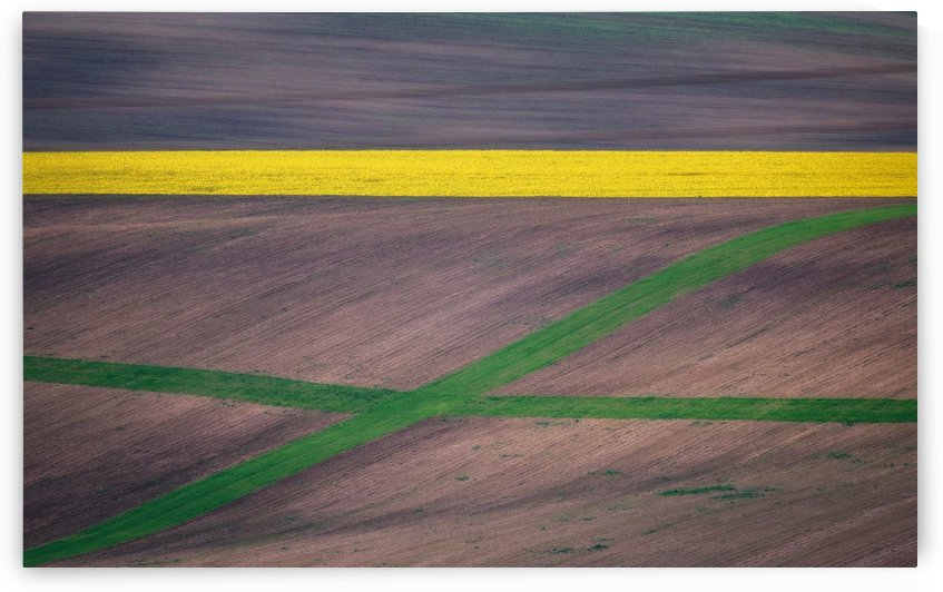 Painting the fields by 1x