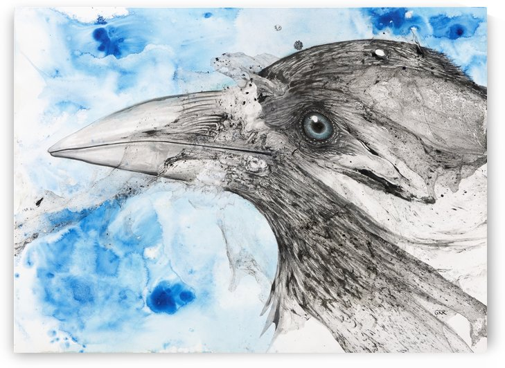 Illustration of a bird's eye and beak with mottled blue and white background by PacificStock
