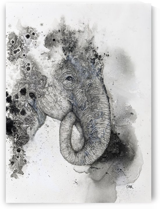 Illustration of an elephant's head by PacificStock
