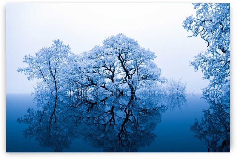 nature by Stock Photography