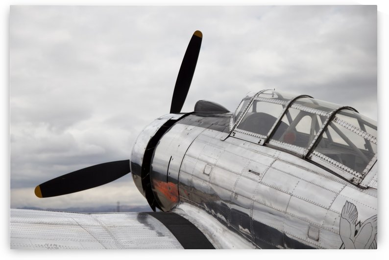 P-53 Nose by A Booth