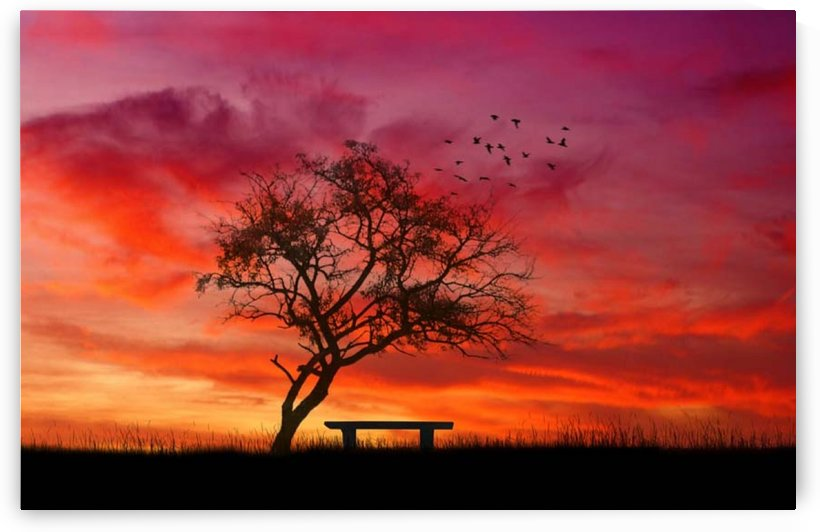 lonely sunset by Elena Georgiou