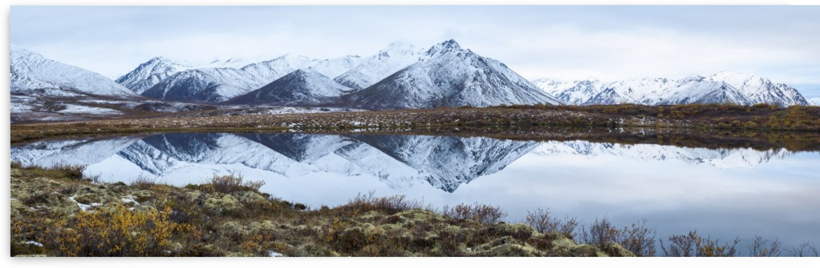Mount Adney reflected in a pond along the Dempster Highway in the northern Yukon; Yukon, Canada by PacificStock