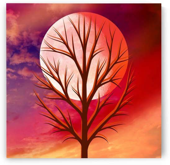 Moon Tree by Peggy Garr