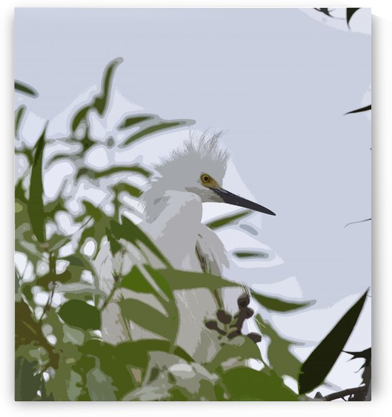 Snowy Egret Abstract 1 by Linda Brody