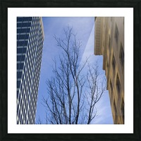 Reaching up Picture Frame print