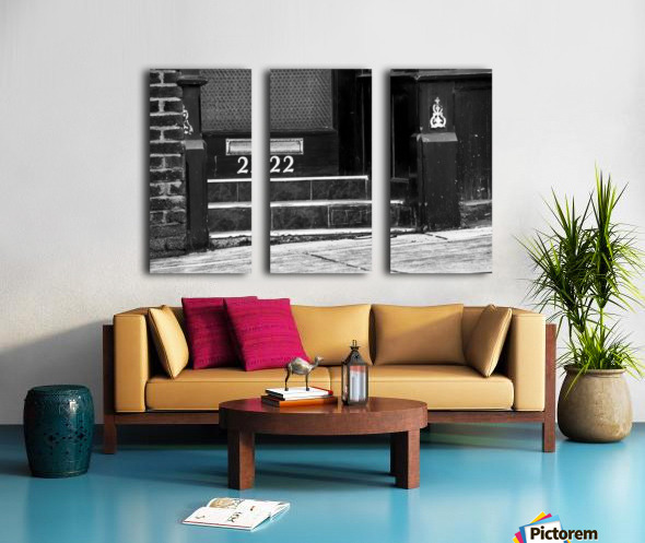 222 Split Canvas print