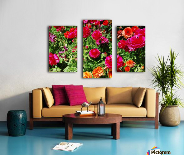 Flowers Growing in a garden Canvas print