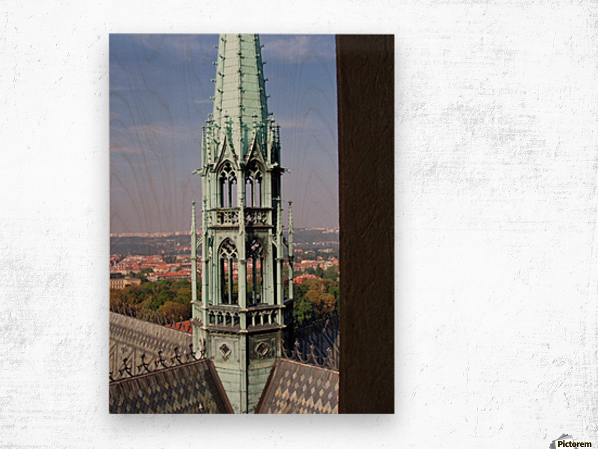 Atop The cathedral in Prague Wood print